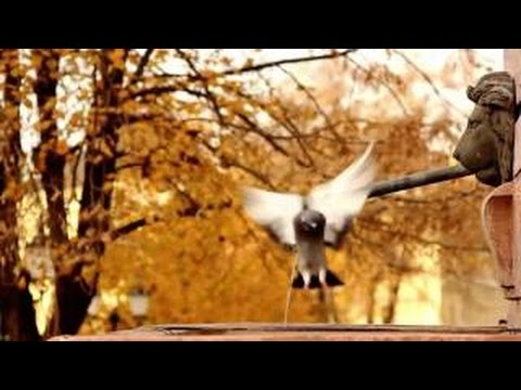Best Instrumental Music 2015 – Best Piano Instrumental Ever – Piano Music Relaxing 2015 vo