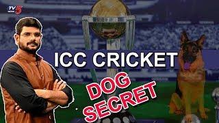 ICC Cricket Dog Secret | TV5 Murthy Debate | TV5 News Special