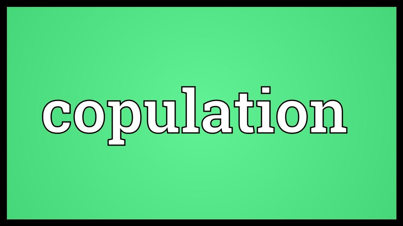 Copulate synonym