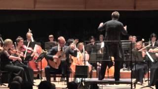 Concierto de Aranjuez - Allegro con spirito - Martin van Hees, Guitar