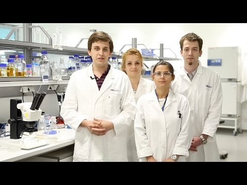 Synthetic Biology:  Synthetic Biology for Industrial Biotechnology - Group 5