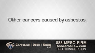 Mesothelioma Attorney Richard Dodd Explains Other Cancers Caused by Asbestos