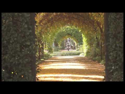 Alowyn Gardens - Melbourne's Yarra Valley