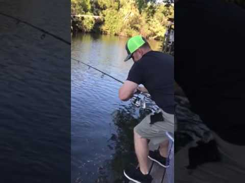 Fishing giant gar hillsborough river video part 1 youtube for Hillsborough river fishing