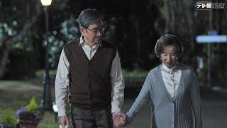 その夜、九条摂子(姫/八千草薫)が菊村栄(石坂浩二)のヴィラを訪ね...