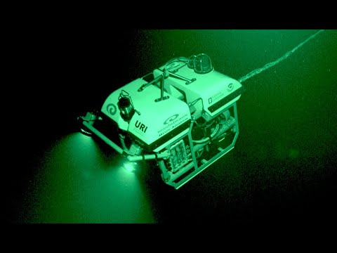 5 Unexpected Deep Ocean ROV Findings