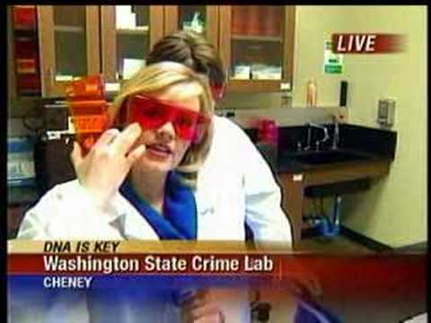 DNA testing at state crime lab