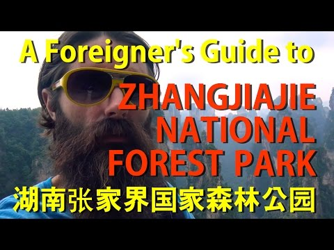 A Foreigner's Guide to Zhangjiajie National Forest Park 湖南张家