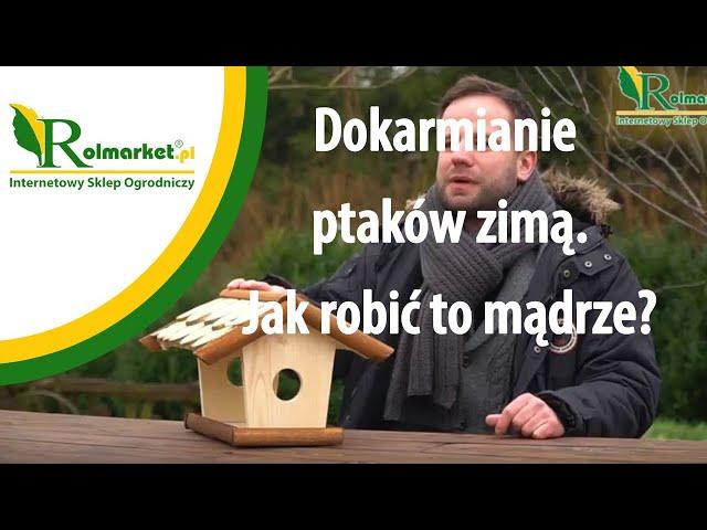 Dokarmianie ptaków zim? - jak robi? to m?drze? | Rolmarket.pl
