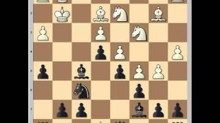 Slav Defense: J Zukertort vs W Steinitz 1886