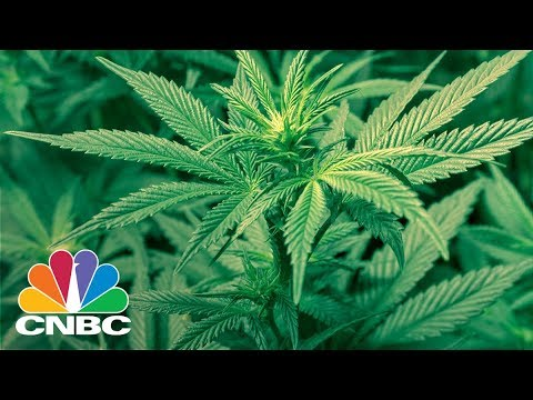 California's Toke Of Midnight: State Gets Ready To Legalize Recreational Marijuana | CNBC