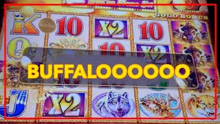 💰HUGE BUFFALO GOLD LINE HIT @ Graton Casino 🎰 NorCal Slot Guy