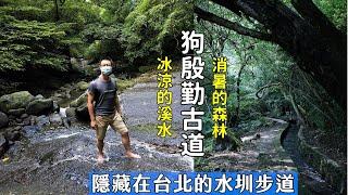 隱藏在台北的狗殷勤古道緊鄰溪流、水圳,全程清涼消暑、平緩好走的森林步道