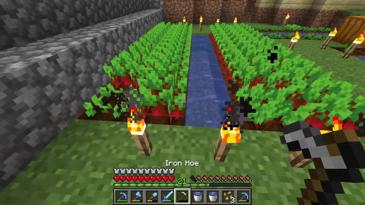 How To Make A Beetroot Farm Minecraft Youtube