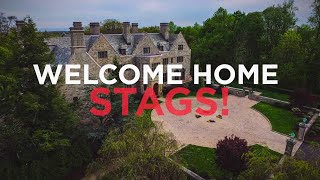 Welcome Home Stags! Class of 2020