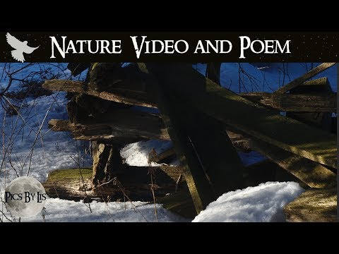 Winter to Spring - Storytelling Day Nature Video with Poem