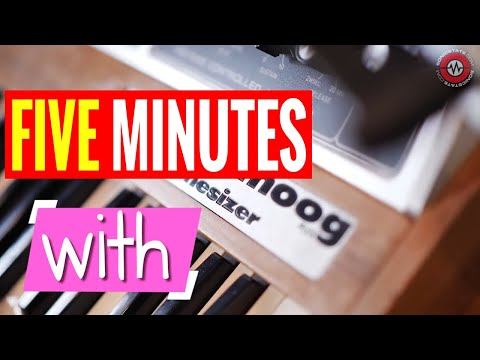 5 MINUTES WITH - Memorymoog