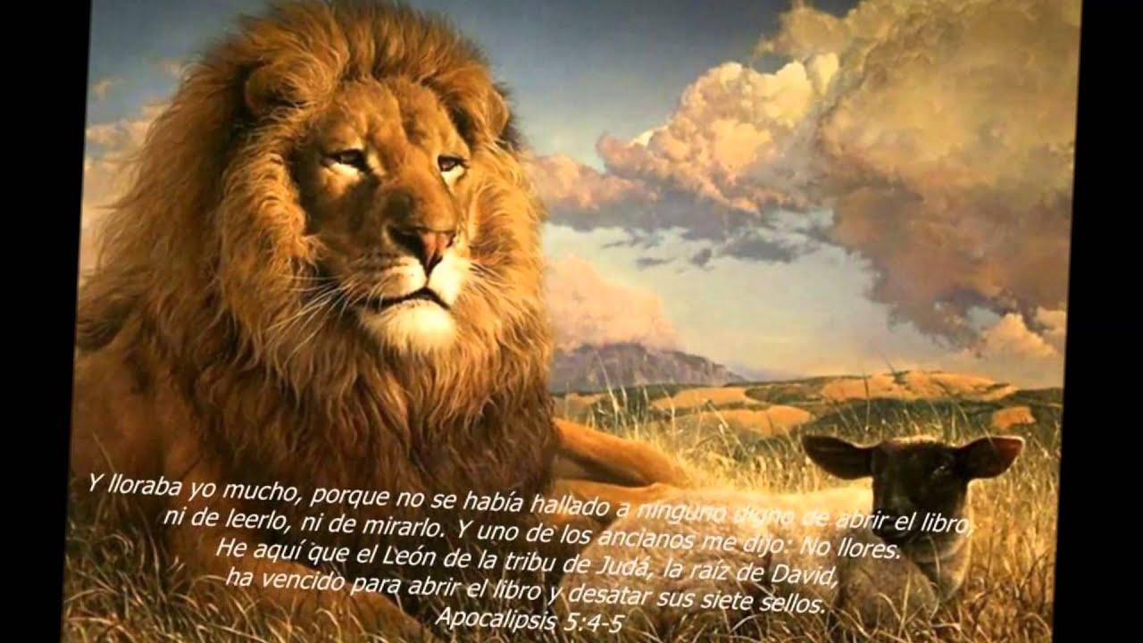 Jasmyne de leon
