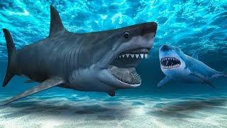 Poderia Existir um Tubarão Mais Assustador Que o Megalodonte