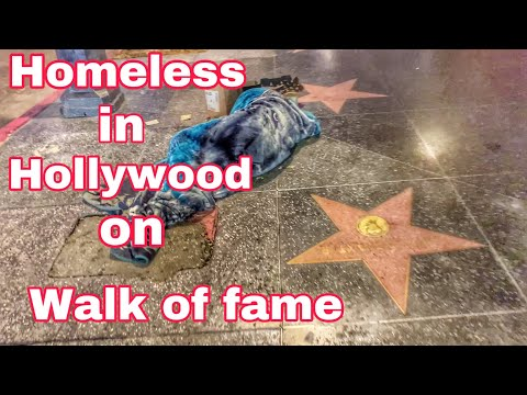 THE HOLLYWOOD WALK OF SHAME