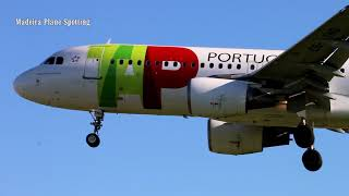 Fifty 50 Landings at Lisbon Airport in fifteen minutes I Madeira Plane Spotting