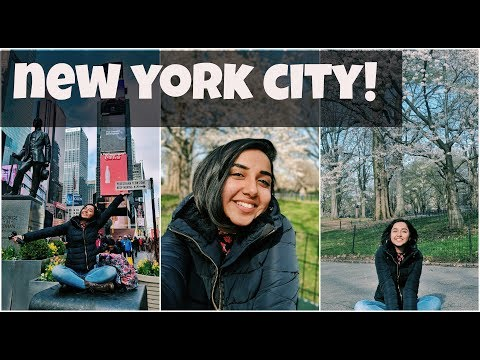 New York City In A Day!   MostlySane