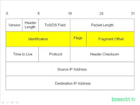 2. The IPv4 Packet
