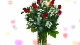 8 Mart qadınlar bayramı üçün gözel tebrik.Whatsapp statusları