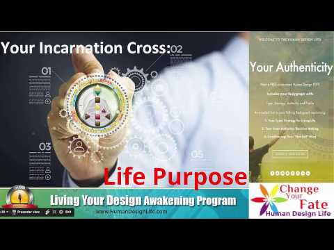 Human Design Life Solutions