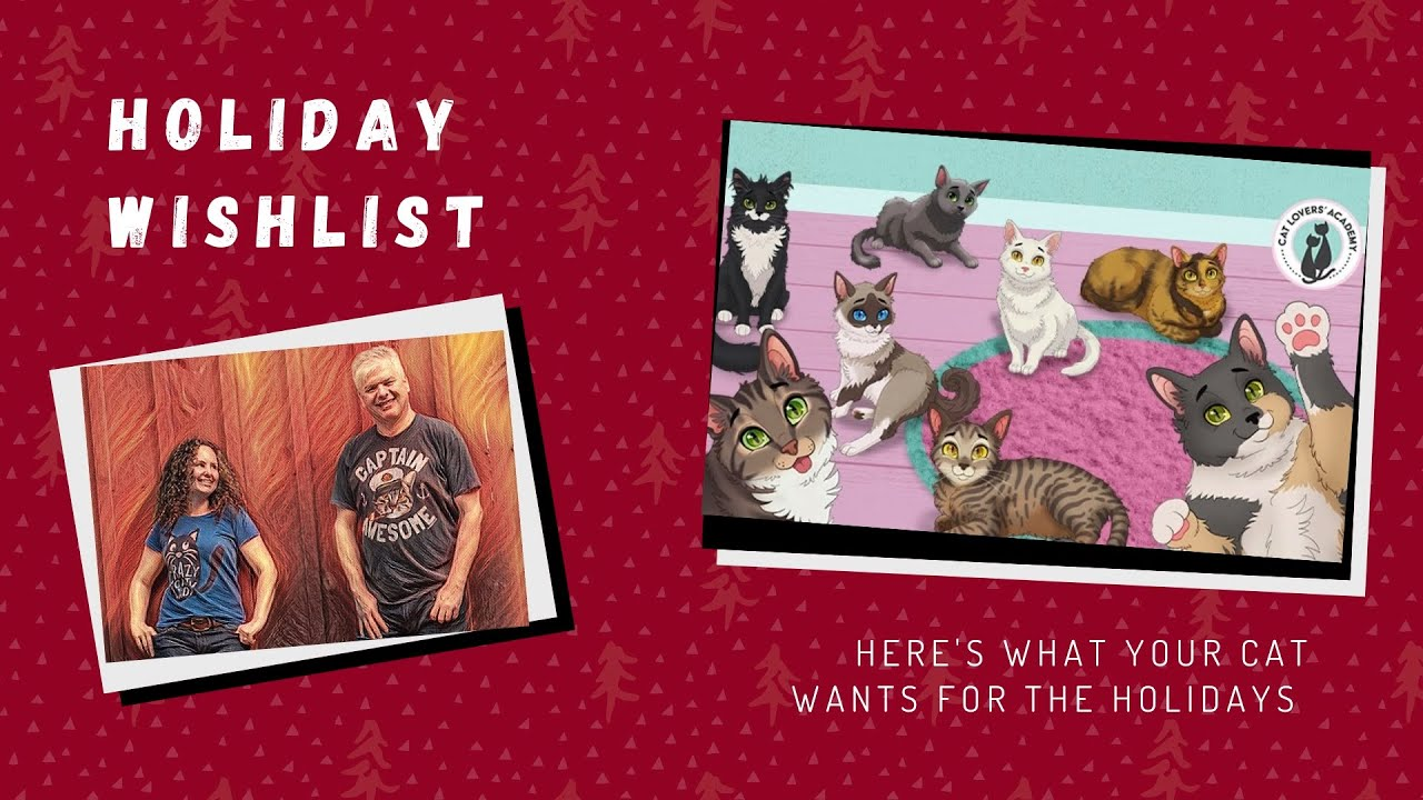 Your Cat's Holiday wish list