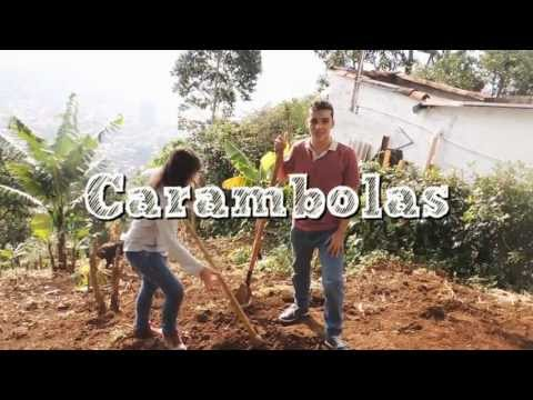 Programa # 3 PNG Carambolas/The Meal