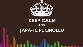 DJ DANY - TAPA-TE PE LINOLEU (Original Mix)
