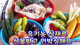 유기농식재료언박싱1~유기농 여름야채,채소를 선물받았어요…