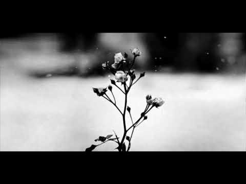 Frédéric Chopin Spring Waltz  (Mariage d'Amour) [Please Read Description]