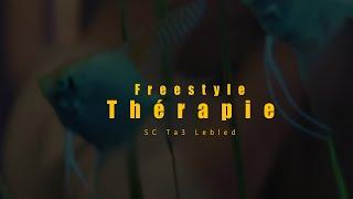 SC - Freestyle Thérapie (Clip Officiel) Anibal Prod