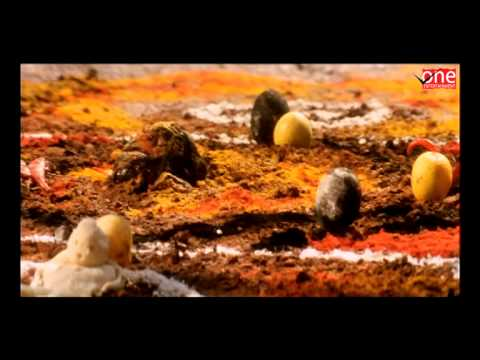 Aaj Ka Devi Putra | Hindi Dubbed Movies | Venkatesh
