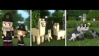 Llama Life - Cat Life - Witch Life Compilation Top 5 - Minecraft Animation