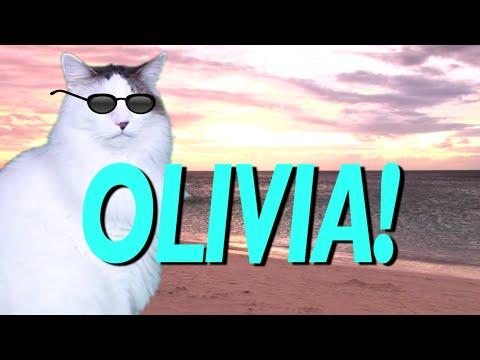 HAPPY BIRTHDAY OLIVIA! - EPIC CAT Happy Birthday Song ...