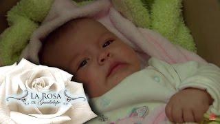 El robo de Luisita   Una moneda de amor   La Rosa de Guadalupe