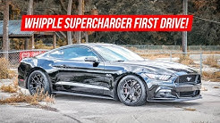 2016 Mustang GT Whipple Supercharger First Start and Drive