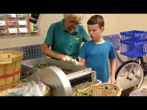 Shelling Fresh Organic Black Eyes Peas at the Summer Green Market in Palm Beach Gardens