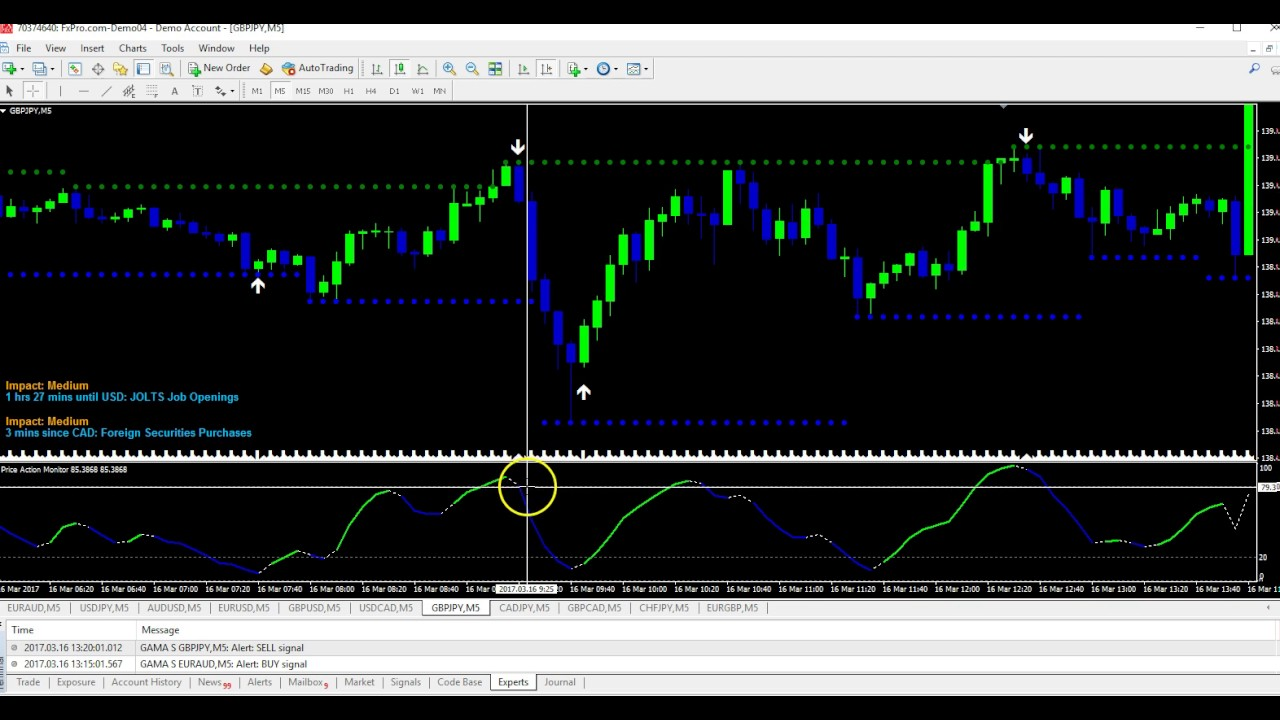 Category best binary options software 2016
