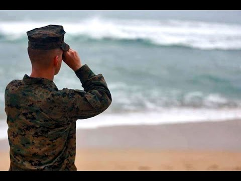 Trace Elements of Marines