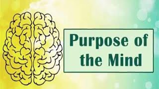 Purpose of the Mind