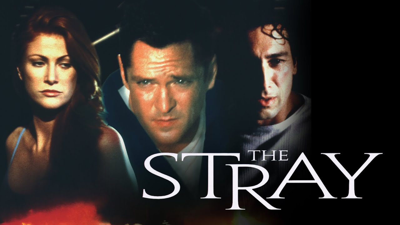 Download The Stray - Full Movie