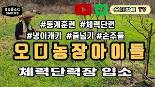 손주녀석들 오디농장 동계훈련입소!
