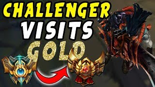 BEST TRYNDAMERE OCE VISITS GOLD [Special] | Depths of Bronze to Diamond
