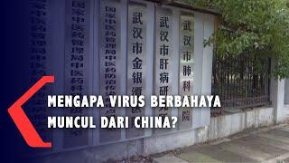 Mengapa Sejumlah Virus Berbahaya Muncul dari China? Termasuk Virus Corona