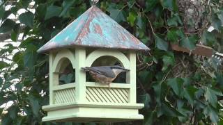 Wildlife World Bempton Bird Table In Use