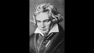 Ludwig van Beethoven: String Quartet No. 4 in C minor, Op. 18: I. Allegro ma non tanto